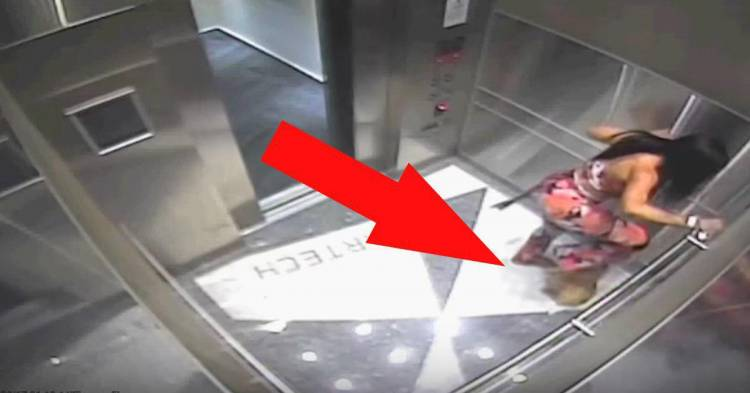 Жінка з насолодою топтала собаку ногами. Вона не знала, що в ліфті встановлена прихована камера …