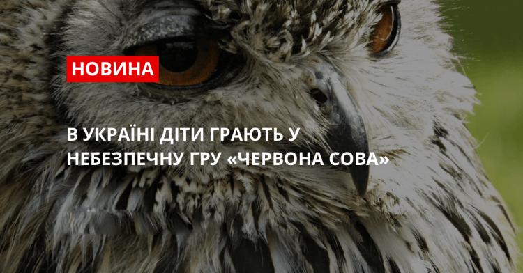 В Україні діти грають у небезпечну гру «Червона сова»