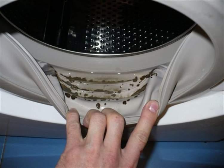 Чудо-метод, який допоможе позбутися цвілі в пральній машині