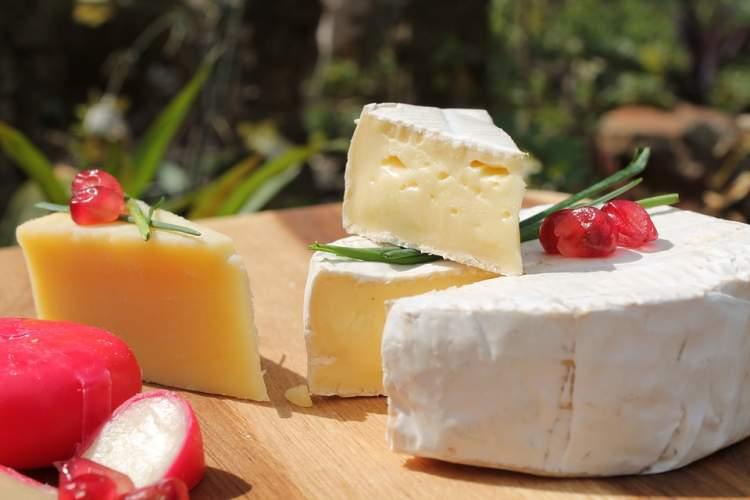 Як відрізнити сир від сирного продукту. Поради від професіоналів