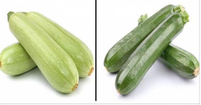 У чому різниця між цукіні і звичайними кабачками? Раніше думала, що вони відрізняються тільки кольором