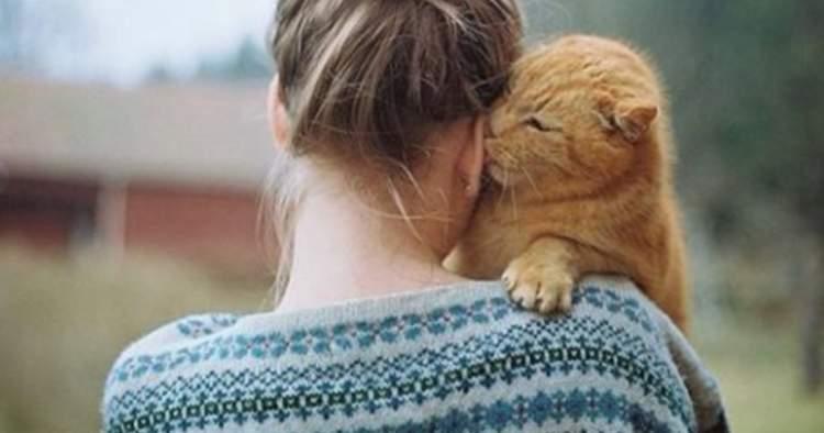 30 цікавих фактів про кішок + кілька корисних порад